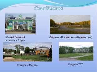 Самый большой стадион « Труд» Стадион « Мотор» Стадион «Политехник» (Буревест