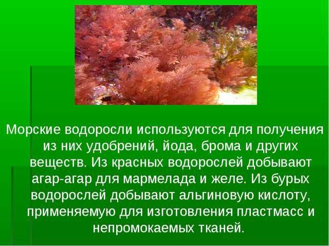 Морские водоросли используются для получения из них удобрений, йода, брома и...