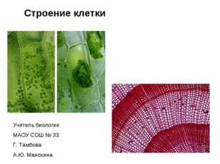 Строение клетки Учитель биологии МАОУ СОШ № 33 Г. Тамбова А.Ю. Манохина
