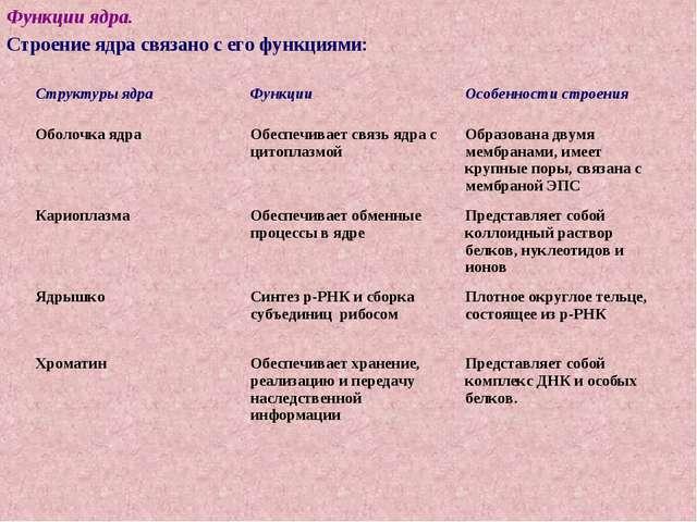Функции ядра. Строение ядра связано с его функциями: Структуры ядраФункцииО...