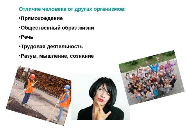 Отличие человека от других организмов: Прямохождение Общественный образ жизни...