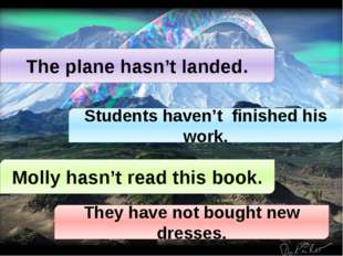 The plane hasn't landed. Students haven't finished his work. Molly hasn't rea