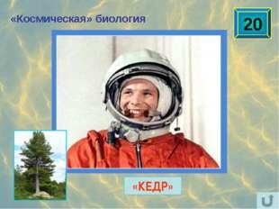 Наука и техника Ю.А.Гагарину после полёта в космос подарили автомобиль с номе