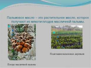 Пальмовое масло – это растительное масло, которое получают из мякоти плодов