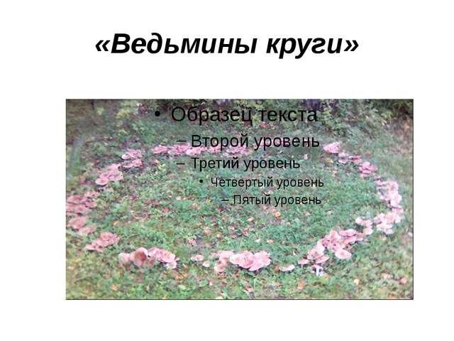 «Ведьмины круги»