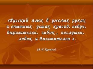 «Русский язык в умелых руках и опытных устах красив, певуч, выразителен, гиб