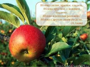 Яблоко спелое, красное, сладкое, Яблоко хрусткое, с кожицей гладкою. Яблоко я