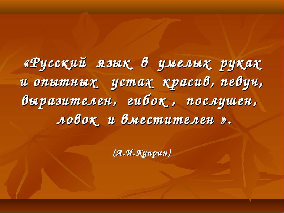 «Русский язык в умелых руках и опытных устах красив, певуч, выразителен, гиб...