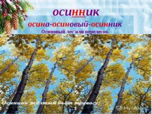 осинник осина-осиновый-осинник Осиновый лес или перелесок.