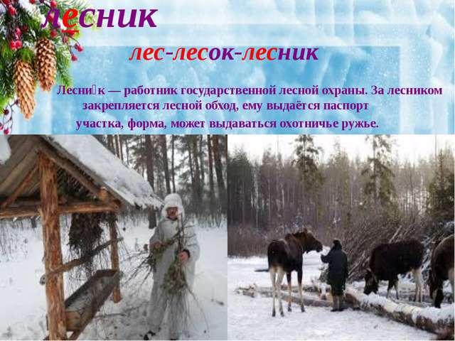 лесник лес-лесок-лесник Лесни́к— работник государственной лесной охраны. За...