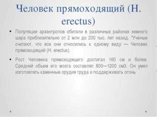 Человек прямоходящий (Н. erectus) Популяции архантропов обитали в различных р