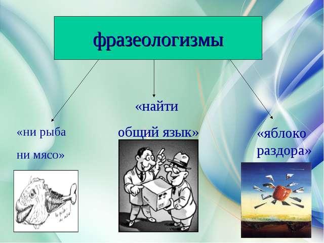 «ни рыба ни мясо» «найти общий язык» «яблоко раздора» фразеологизмы