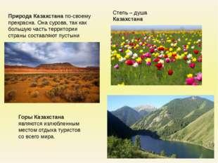 Степь – душа Казахстана Природа Казахстана по-своему прекрасна. Она сурова, т
