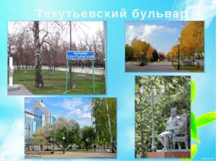 Текутьевский бульвар
