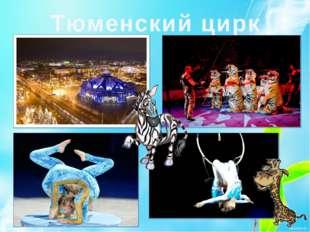 Тюменский цирк
