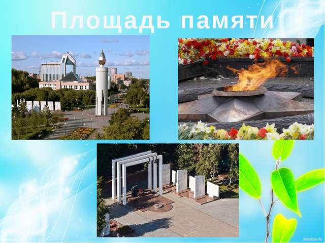 Площадь памяти