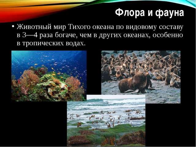 Флора и фауна Животный мир Тихого океана по видовому составу в 3—4 раза богач...