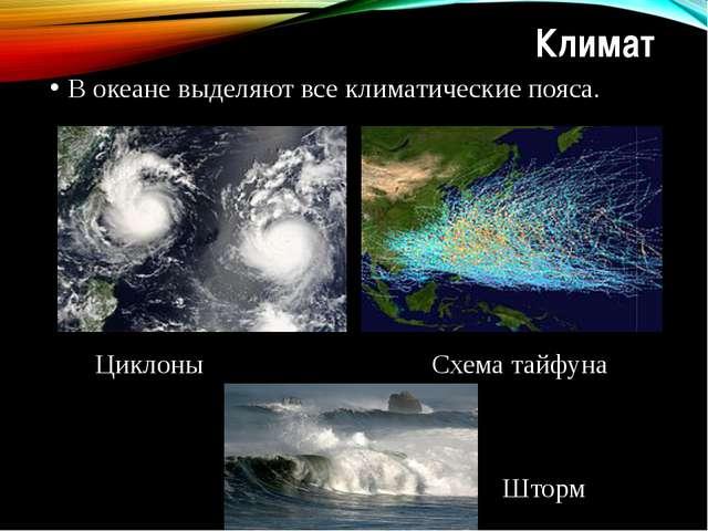 Климат В океане выделяют все климатические пояса. Циклоны Схема тайфуна Шторм