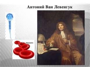 Антоний Ван Левенгук