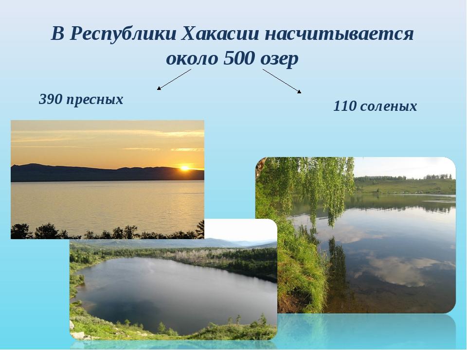 В Республики Хакасии насчитывается около 500 озер 390 пресных 110 соленых