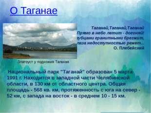 Речная сеть национального парка питает своими водами Каспийское море на юге