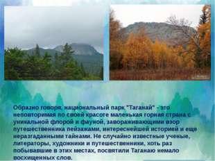 """Образно говоря, национальный парк """"Таганай"""" - это неповторимая по своей крас"""