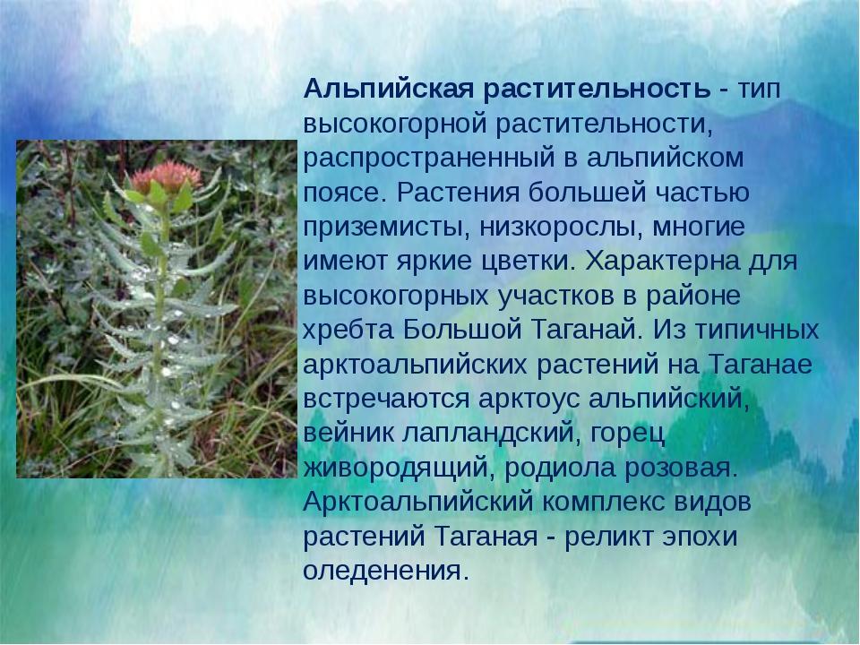Млекопитающие представлены шестью отрядами из девяти, обитающих в России. На...