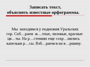 Мы находимся у подножия Уральских гор. Соб…раем ж…лтые, лиловые, красные цв…