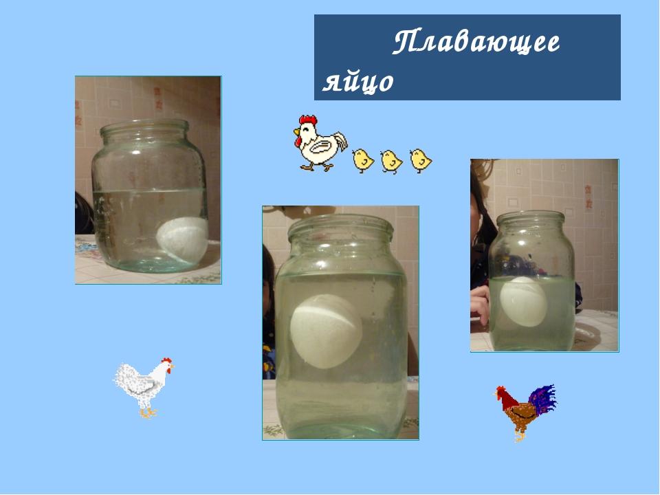 Плавающее яйцо