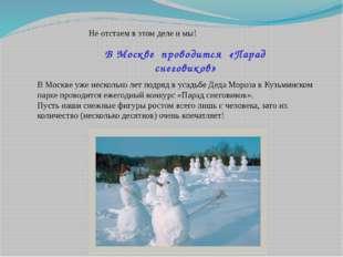 В Москве проводится «Парад снеговиков» Не отстаем в этом деле и мы! В Москве