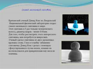 Самый маленький снеговик Британский ученый Девид Кокс из Лондонской Националь