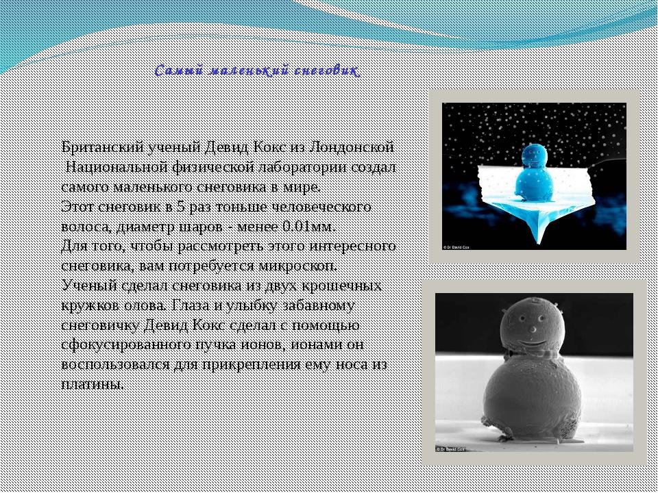 Самый маленький снеговик Британский ученый Девид Кокс из Лондонской Националь...