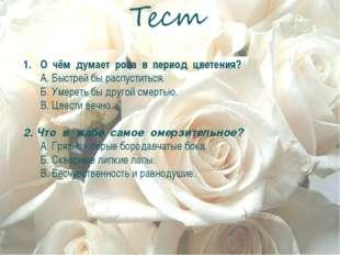 О чём думает роза в период цветения? А. Быстрей бы распуститься. Б. Умереть б