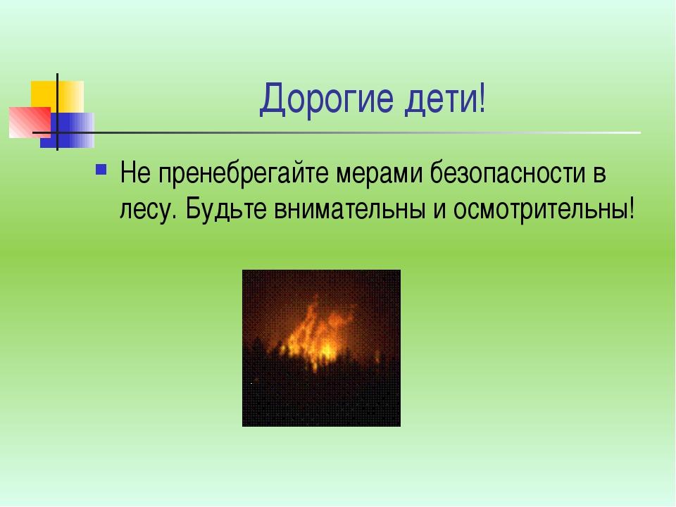 Дорогие дети! Не пренебрегайте мерами безопасности в лесу. Будьте внимательны...
