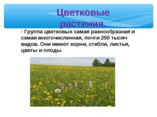 Цветковые растения. - Группа цветковых самая разнообразная и самая многочисле