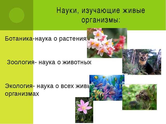 Науки, изучающие живые организмы: Ботаника-наука о растениях Зоология- наука...