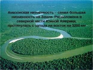 Амазонская низменность – самая большая низменность на Земле. Расположена в се