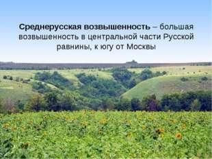 Среднерусская возвышенность – большая возвышенность в центральной части Русск