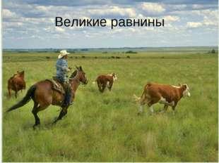 Великие равнины