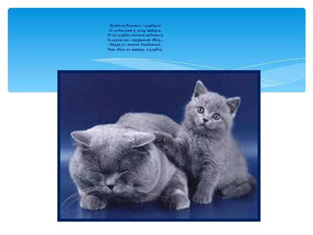 Котёнок возится с клубком: То подползет к нему тайком, То на клубок начнет ки...