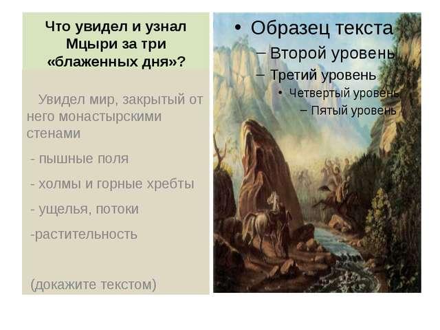 Что увидел и узнал Мцыри за три «блаженных дня»? Увидел мир, закрытый от него...