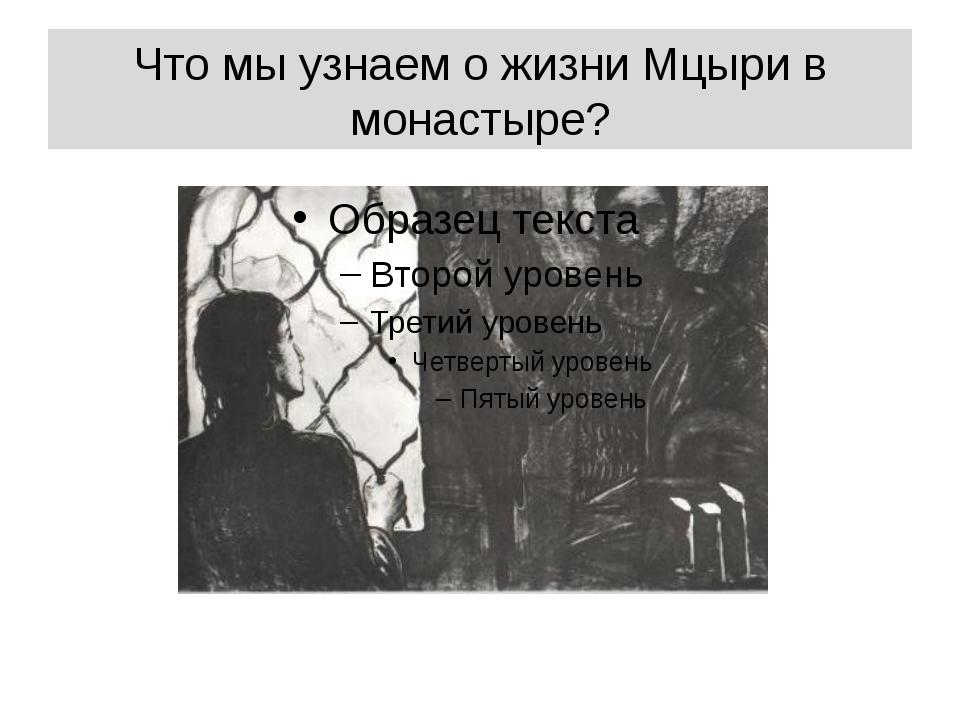 Что мы узнаем о жизни Мцыри в монастыре?