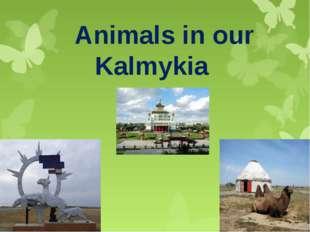 Animals in our Kalmykia