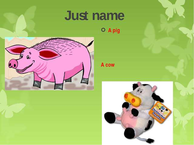 Just name A pig A cow