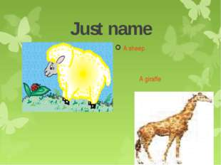 Just name A sheep A giraffe
