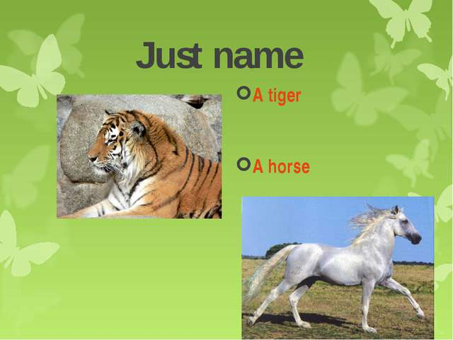 Just name A tiger A horse