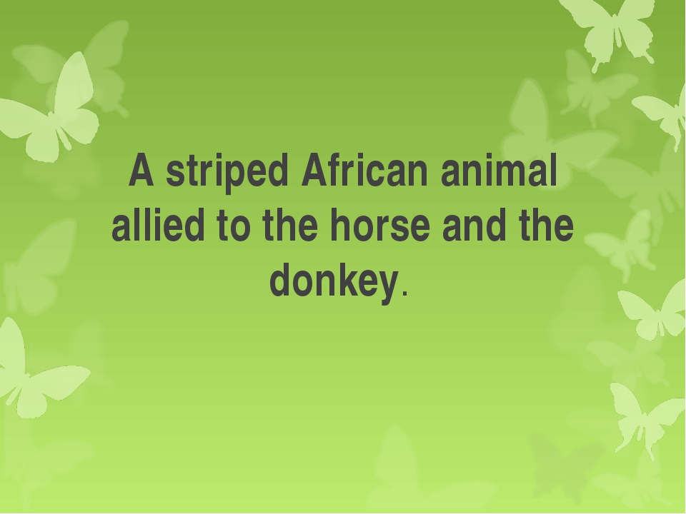 A striped African animal allied to the horse and the donkey.