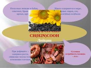Leu (CH3) 2 CH CH3 CH(H2N)COOH Лейцин Много содержится в икре, твёрдых сырах,