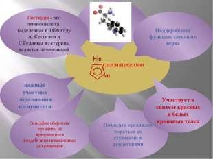 His N CH2CH(H2N)COOH NH важный участник образования иммунитета Гистидин - эт