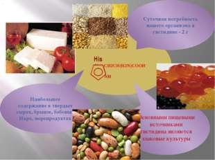 His N CH2CH(H2N)COOH NH Основными пищевыми источниками гистидина являются зл